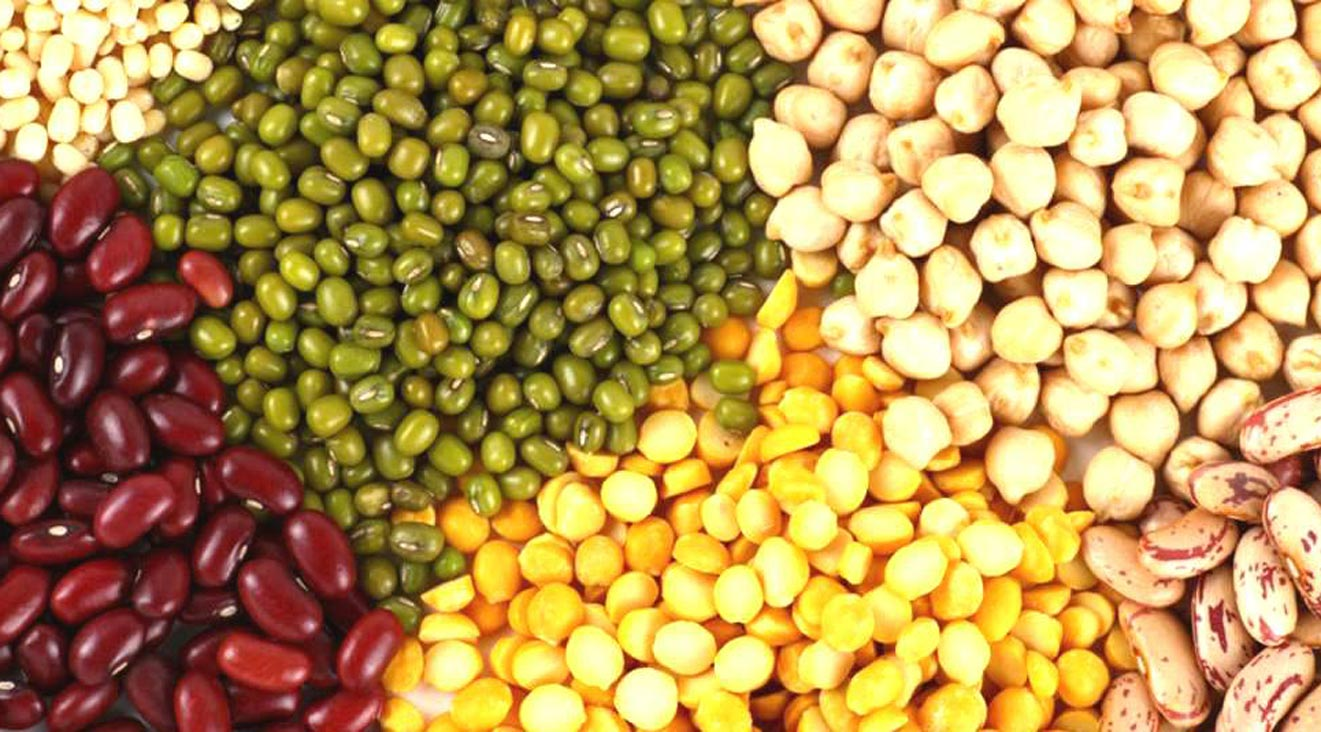 b2-Pulses-dal-import-by-JLV-agro-India